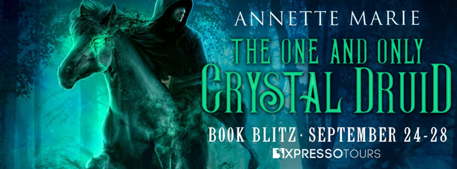 Welcome to the book blitz for THE ONE AND ONLY CRYSTAL DRUID, the first book in the new adult urban fantasy series, The Guild Codex: Unveiled, by Annette Marie