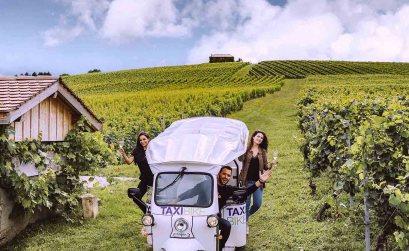 Domaine de la planta - Vignoble Suisse