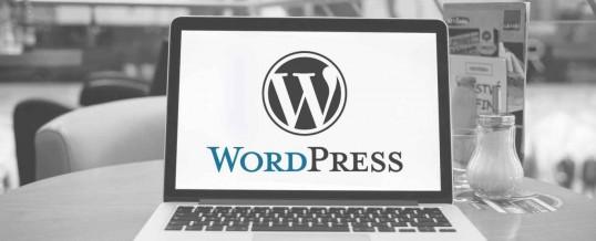 Dasar CMS WordPress Yang Wajib Diketahui