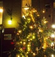 thiemeloods kerst