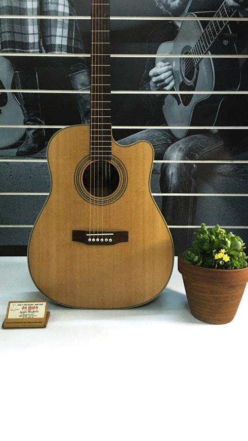 Đàn Guitar giá rẻ M12