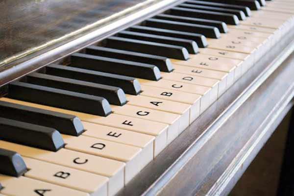 Học Piano hay Học Organ? 2