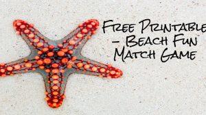 Free Printable – Beach Fun Match Game