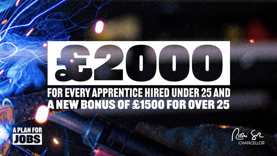 Rishi Sunak jobs plans for UK apprentices