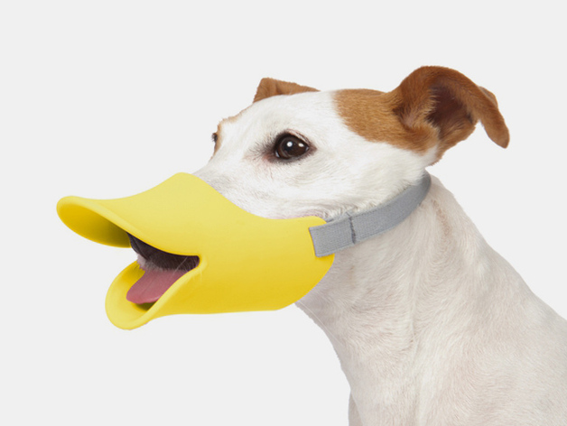 dog muzzle2 preview featured Dog Muzzles For Pitbulls