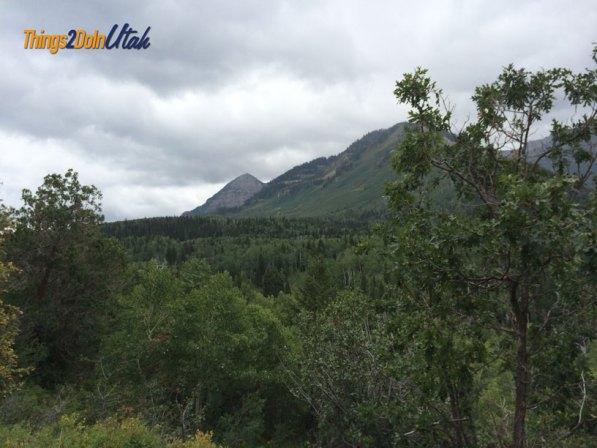 Alpine scenic loop