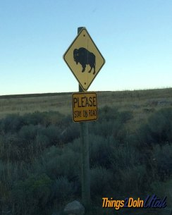 antelope-island-buffalo-sign