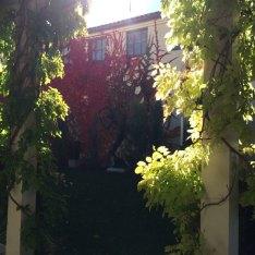 springville-art-museum-scupture-garden