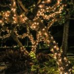 Christmas Lights – Decorate Your Home