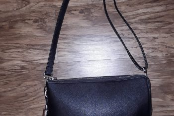 Combination Purse and Carry Case