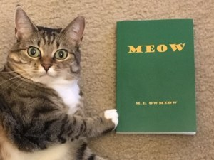 A Novel For Cats