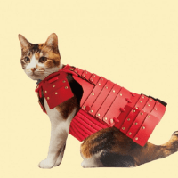 Samurai Armor for Pets