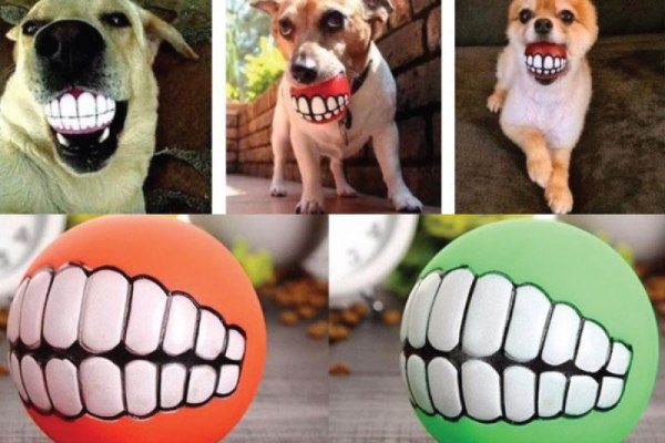 Funny Pet Teeth Toy