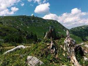 family hikes near Geneva