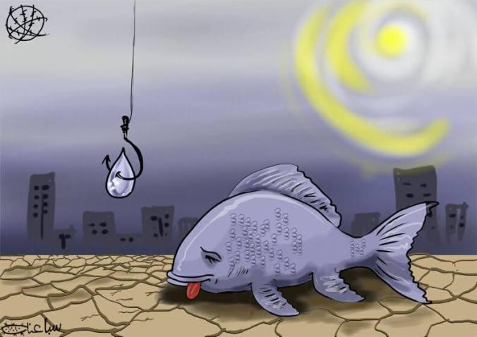 BA thiếu thông tin như cá thiếu nước vậy