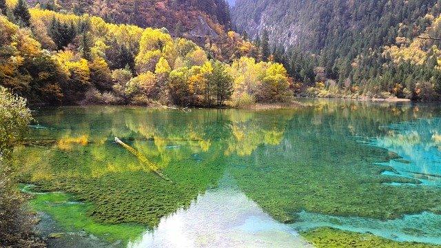 Jiuzhaigou Forest