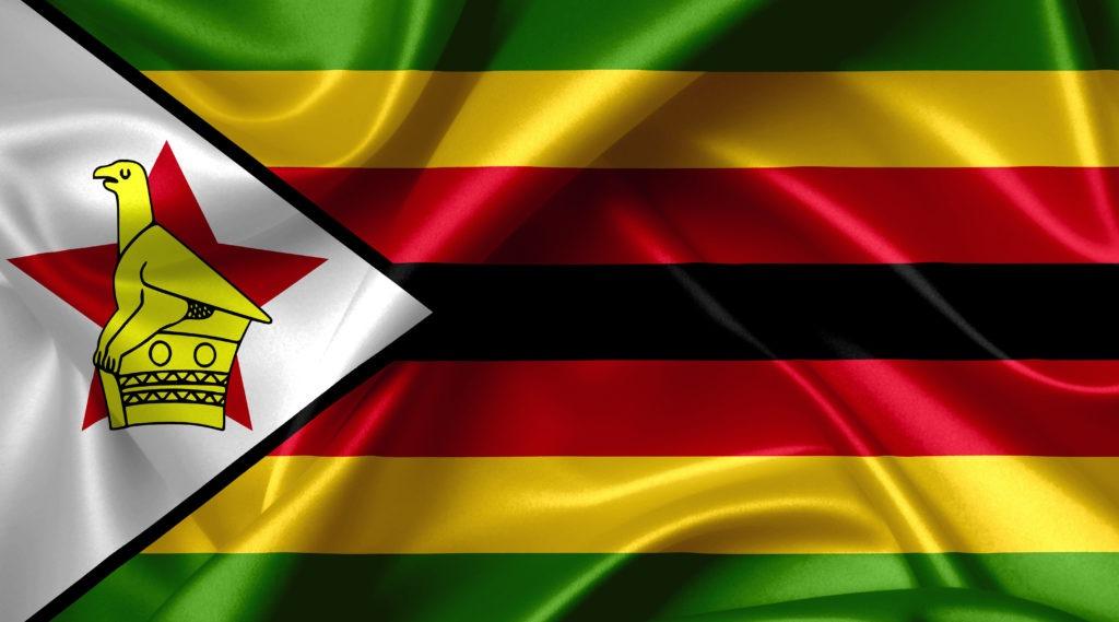 Zimbabwean Lives Matter