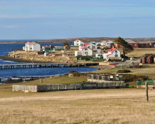 Falklands Calling Andrea Bellot