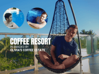 Coffee Resort in Amadeo by Olivia's Coffee Estate