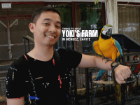 Things-To-Do at Yoki's Farm in Mendez, Cavite