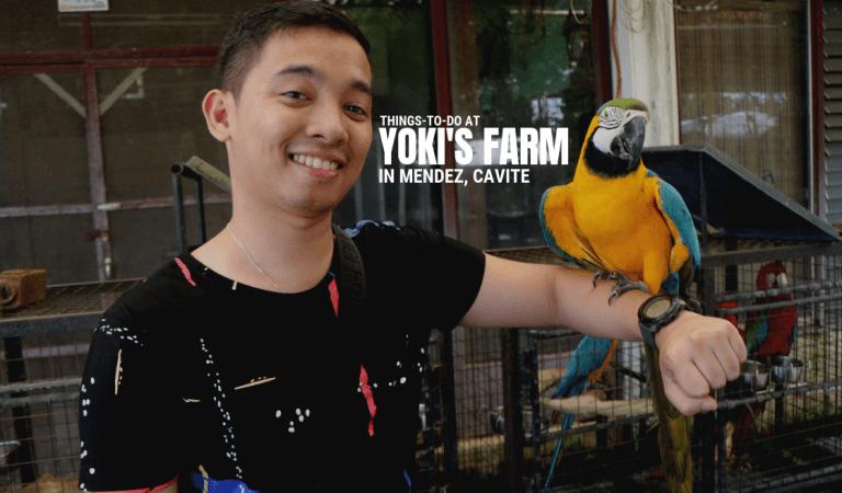 Things-To-Do at Yoki's Farm in Mendez, Cavite