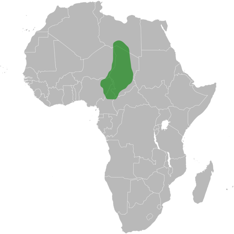 Kanem-Bornu
