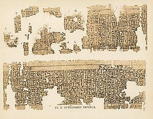 african town planning - pic3 - kahun papyrus