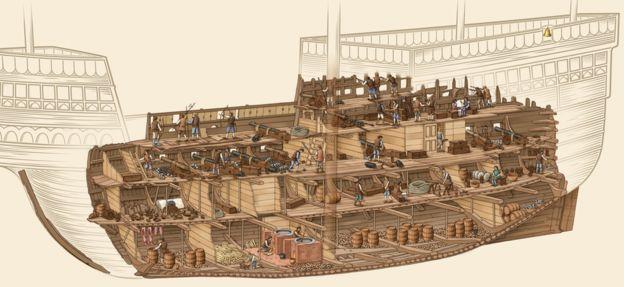 jacques frances - pic3 - Mary Rose ship plan