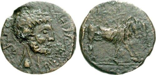 Bocchus II Æ 77000344.jpg