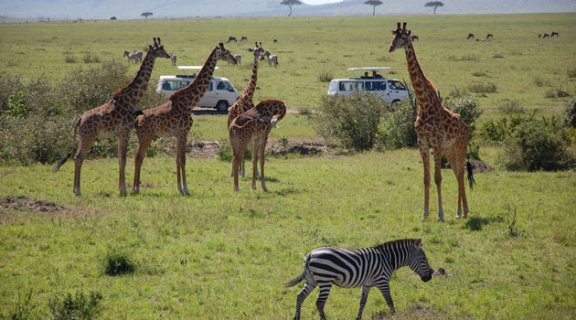 Kenya among top 10 most searched tourism destinations online, globally -  Capital Business