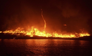 Lake Fire in California burns over 11,000 acres. Photo: REUTERS/Gene Blevins.