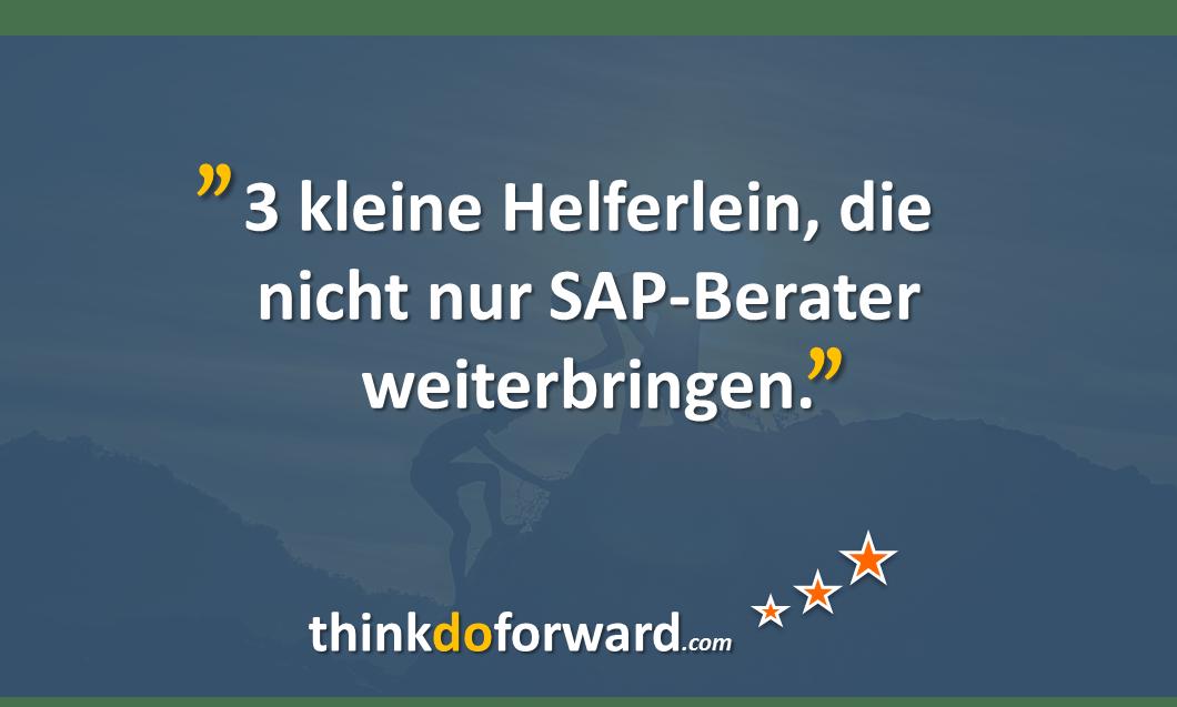 helferlein_sap_berater_2
