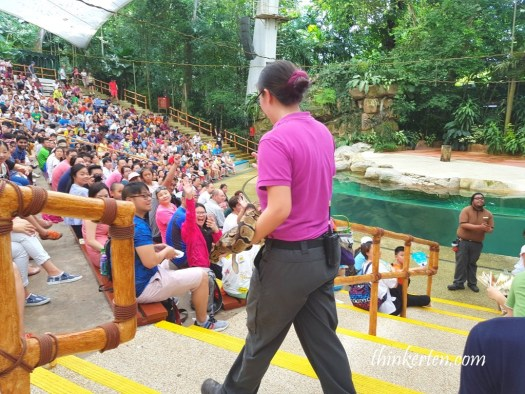 Rainforest show in Singapore Zoo