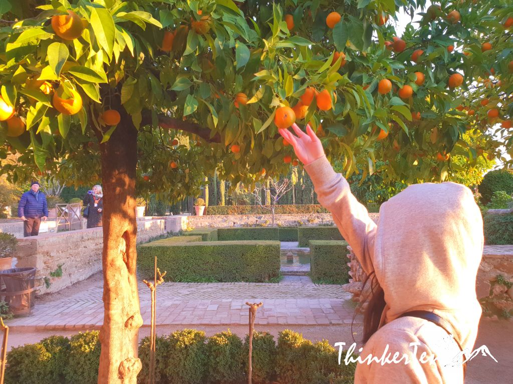 Top 10 things to know before you visit Alhambra, Granada Spain