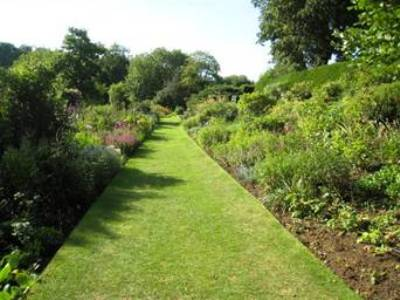 Coton Manor Garden by Anne Wareham - Image 15