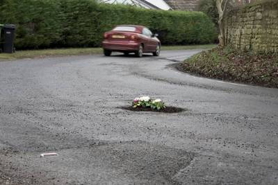 Pothole Gardens by Felicity Waters - Image 3