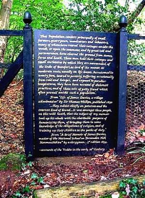 Veddw House Garden - Robin White - Image 2