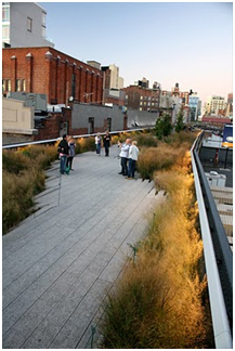 High Line - James Golden - 16