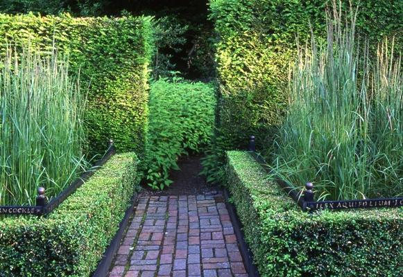 Cornfield Garden, Veddw, copyright Charles Hawes