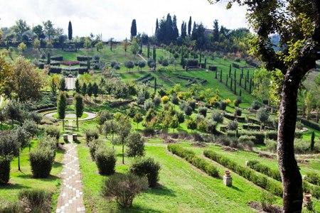 Il Bosco Della Ragnaia copyright Charles Hawes