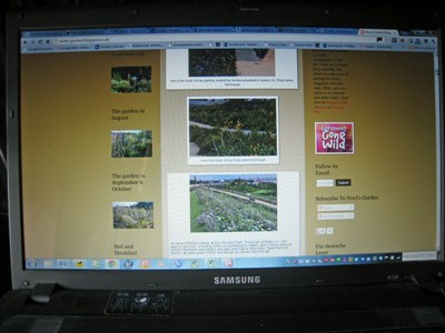 Noel's Blog 2 copyright Anne Wareham