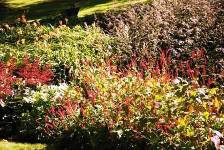 Sezincote 6 copyright Alison Levey, garden review for thinkingardens, editor Anne Wareham