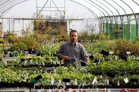 National Botanic Garden of Wales copyright Charles Hawes for thinkingardens