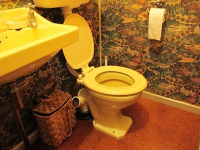 old worldly toilet copyright Abbie Jury for thinkingardens