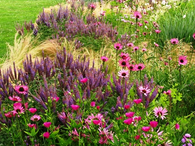Prairie Morning, an example of the Mixed Planting concept Credit. Schmidt copyright Noel Kingsbury on thinkingardens