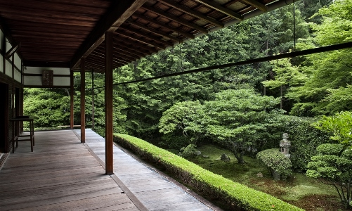 Japanese Zen Gardens by Yoko Kawaguchi and Alex Ramsey reviewed