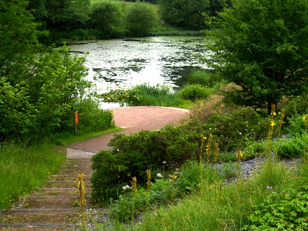 National Botanic Garden of Wales-copyright Anne Wareham