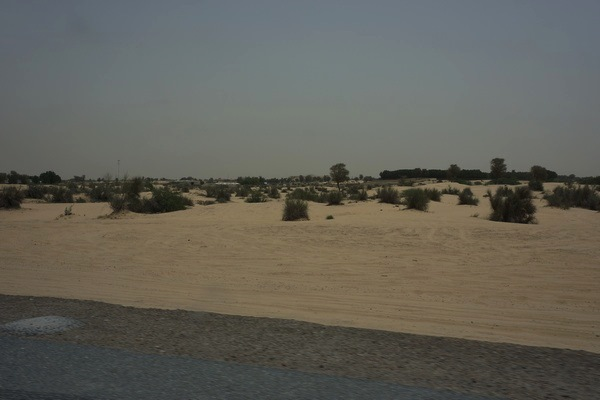 Desert_archetype_Dubai Copyright Mark laurence