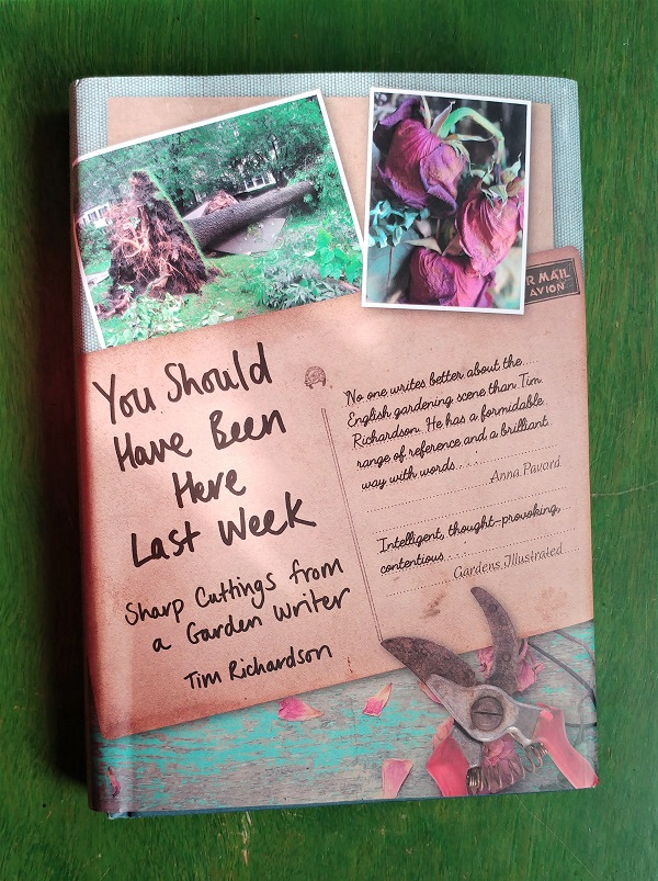 You should have been here last week by Tim Richardson reviewed by Bridget Rosewell