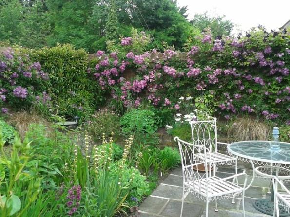 The Mad Enterprise of Starting a New Garden by Bridget Hannigan on thinkingardens photo 1.